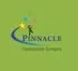 Pinnacle Construction Mumbai